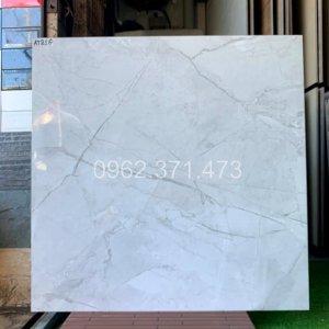 gạch granite Trung quốc 80x80 đồng chất AT81G