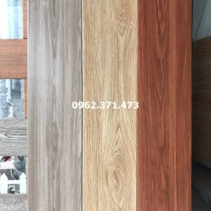 Gạch gỗ Trung Quốc 20x100